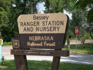 SJSB-Connie Francis 195 Nursery sign